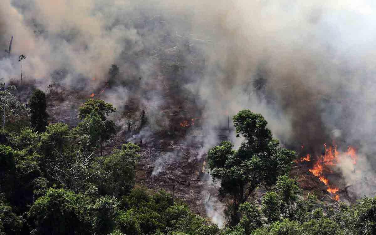 Lewis Hamilton quiere ayudar a salvar el Amazonas