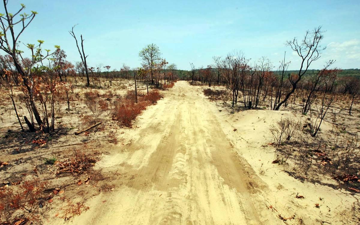 La Extreme E correrá en la Amazonia